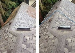 Woodlands roof cleaning service
